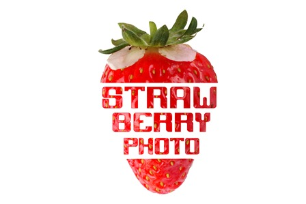 STRAWBERRYPHOTO